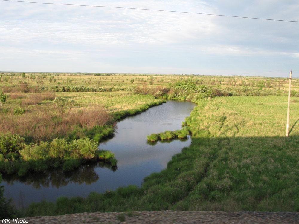 Река Завитая