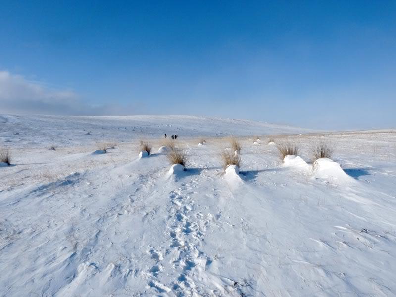 Снежные кочки