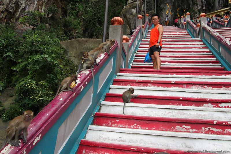 Статуя Муругана, лестница из 272 ступеней и пещеры Бату