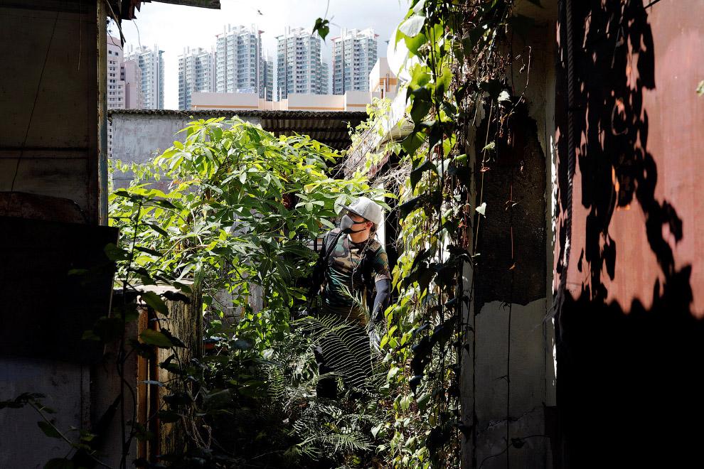9. Жилые кварталы наступают на природу. (Фото Lam Yik Fei):