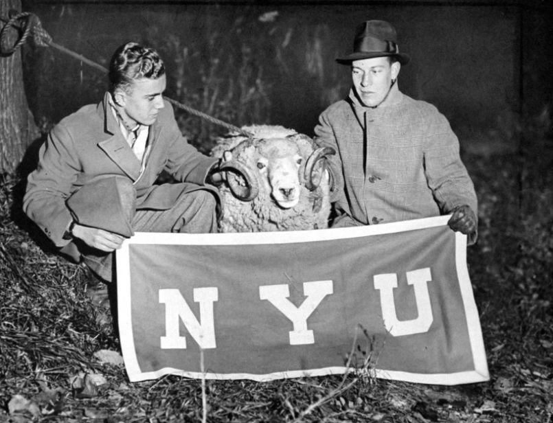 Нью-йоркские студенты фотографируются с похищенным талисманом Фордхемского университета, 1933 год.
