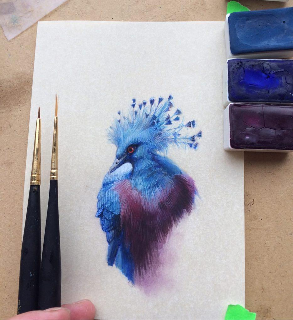 Bird by Bird: Miniature Bird Paintings by Dina Brodsky