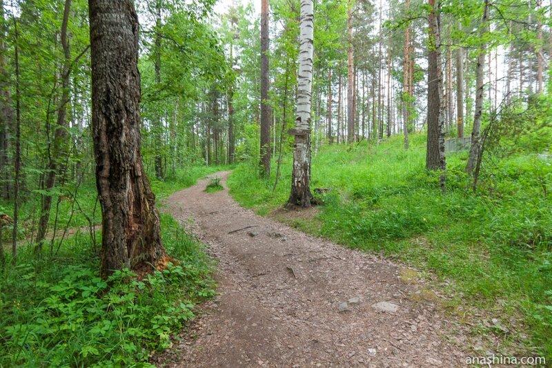 Дорога на гору Сампо, Карелия