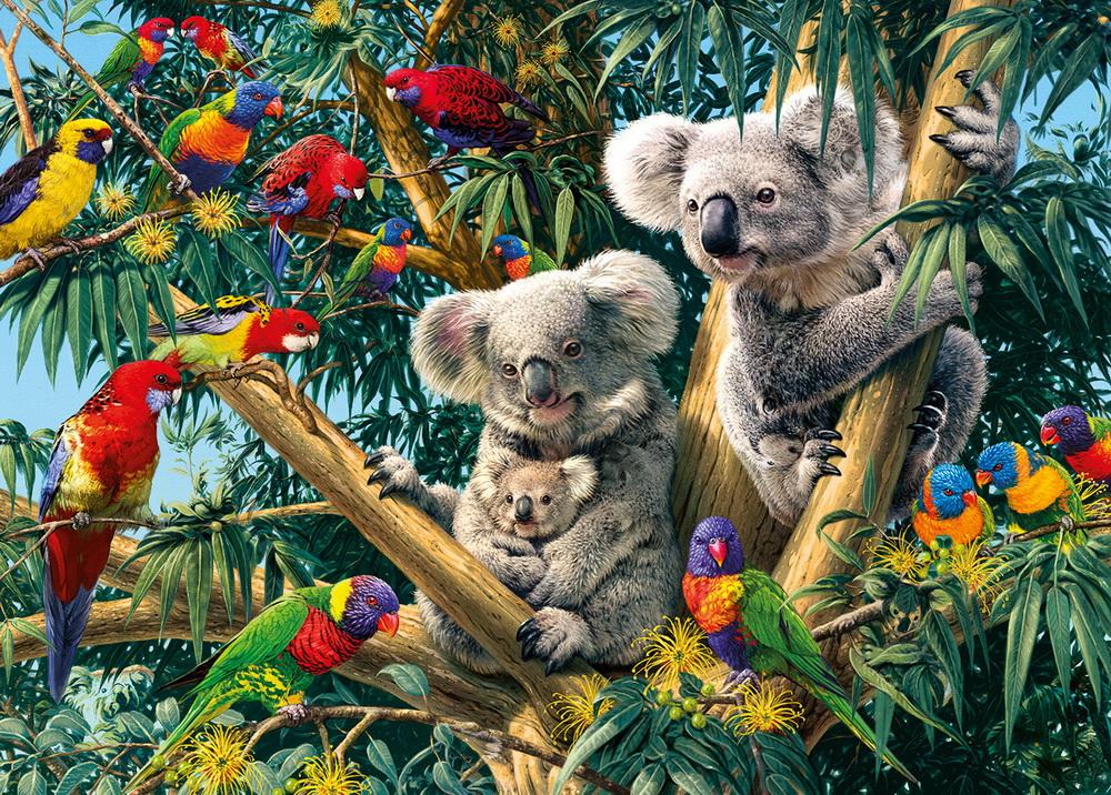 Алмазная вышивка коала 459