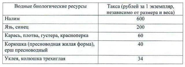 Такси штрафов за незаконный вылов рыбы в Карелии