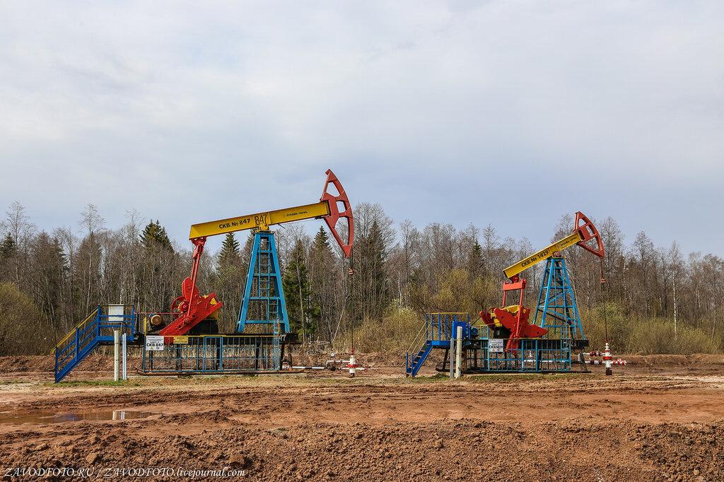 США всё активнее скупает у нас нефть и металлы
