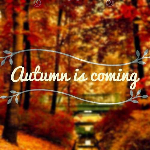 Открытки. Осень пришла