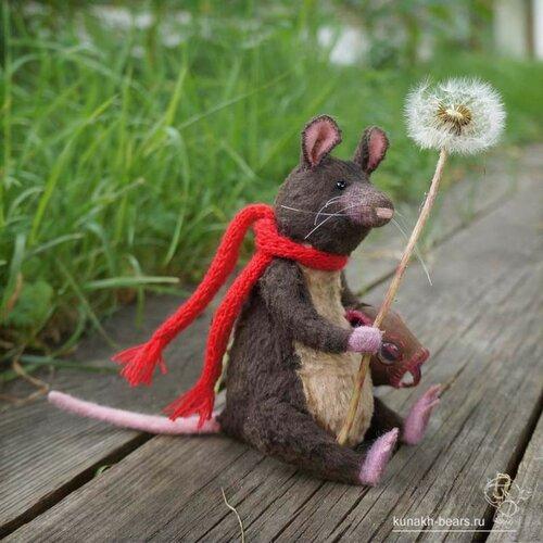 Антуан - летучий мышь