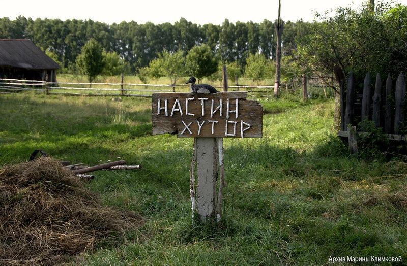 Екатериновка, 15 июля 2017 года