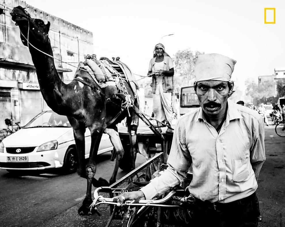«Четыре секунды спустя». Диана Ста Ана: «Снято на оживленной улице Джайпура, Индия».