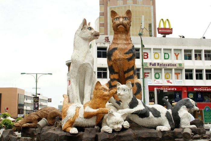 О тесной связи города с кошками свидетельствует много фактов. Так, международный колледж передовых т