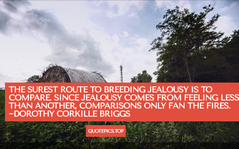 The surest route to breeding jealousy is to compare. Since jealousy comes from feeling less than another, comparisons only fan the fires. ~Dorothy Corkille Briggs
