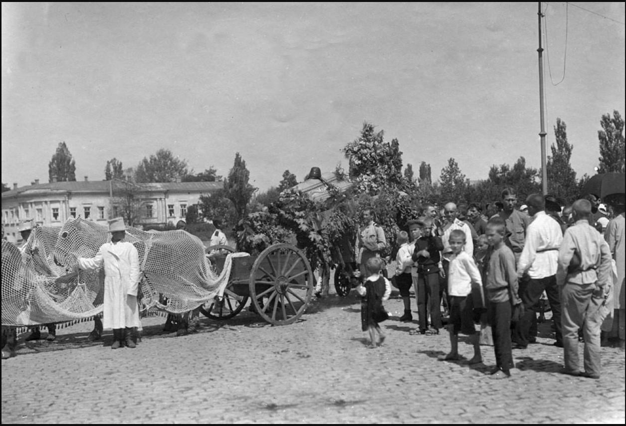 Похороны военного летчика П. И. Бессонова. Новочеркасск. 27 июля 1919
