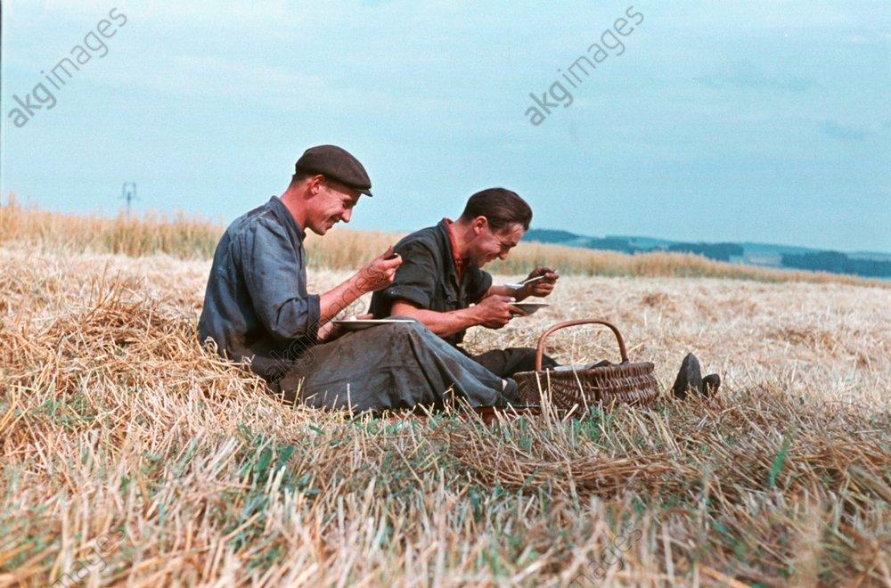 Rast bei Getreideernte um 1953 / Foto - -