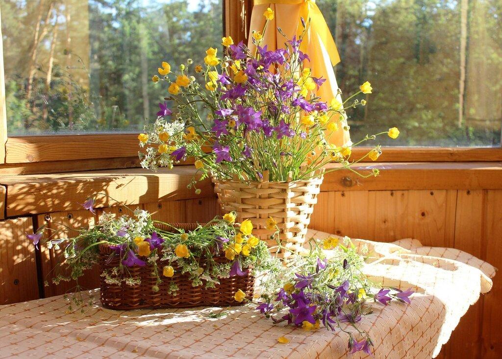 цветущий июнь