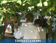 http//img-fotki.yandex.ru/get/236988/170664692.16c/0_194cb0_524c290_orig.png