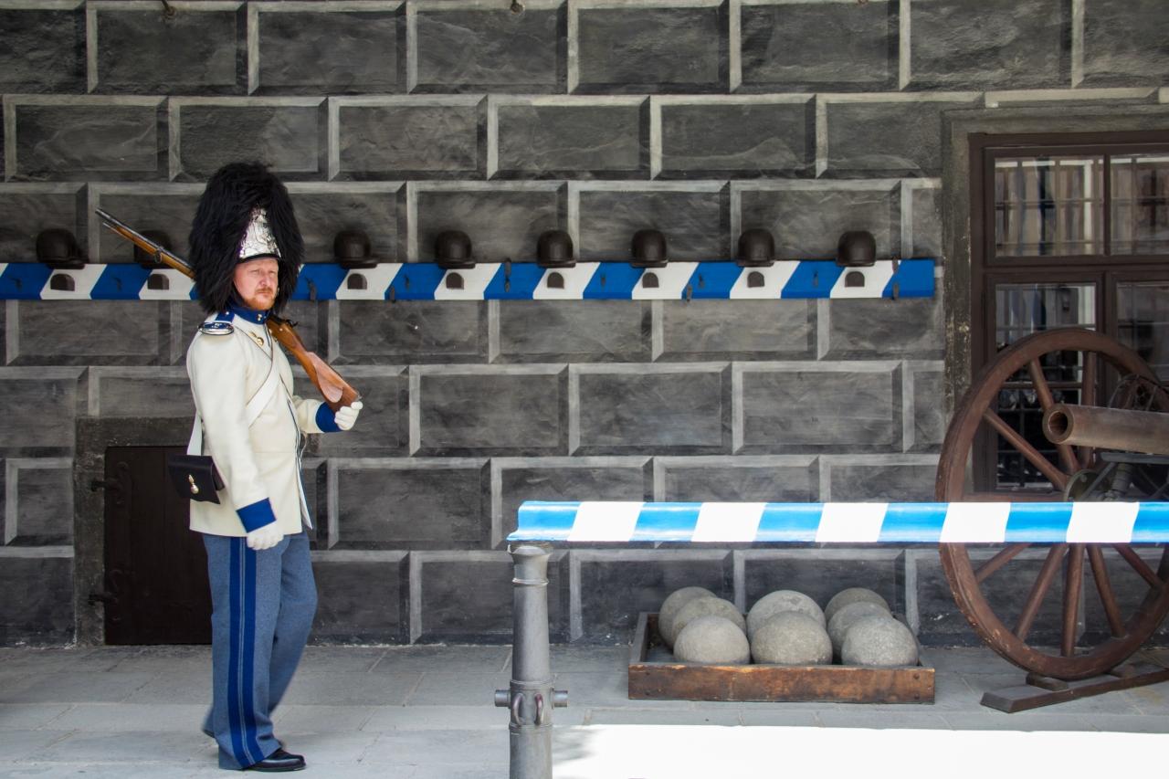 Чехия (Прага, Моравский карст, Глубока-над-Влтавой, Чески-Крумлов, Брно, Правчитские ворота) - Германия мост Бастай - Австрия Вена - Венгрия Будапешт