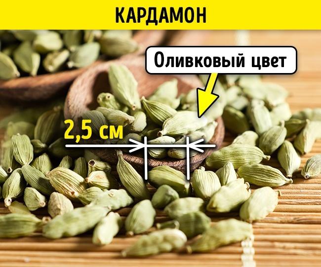 © depositphotos.com  Коробочки кардамона должны быть крупные, цвет— оливковый или зеленоватый