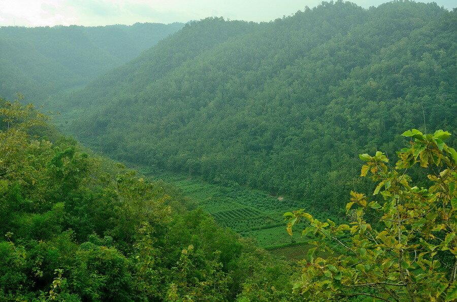Долина Саденг