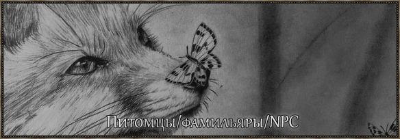 https://img-fotki.yandex.ru/get/236988/506900629.2/0_13e078_92270438_orig.png