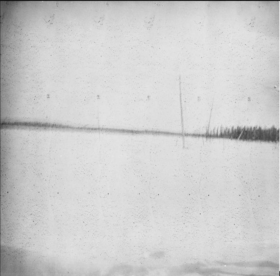117. Вид арктической тундры