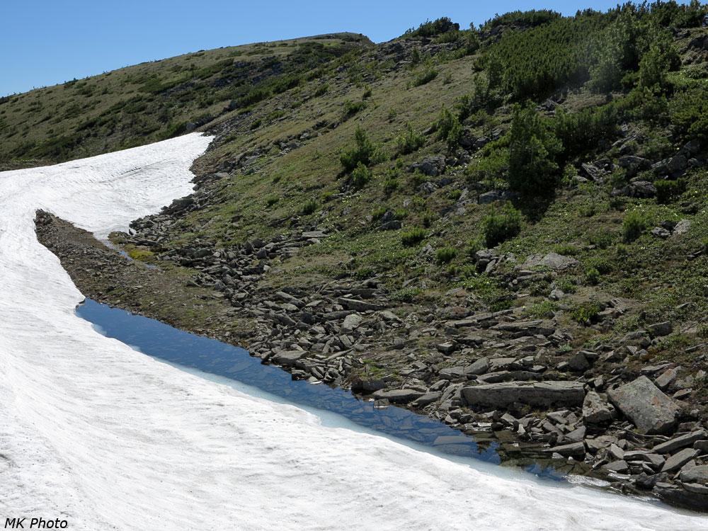 Озеро снежника