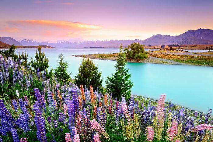 Прекрасный мир природы.