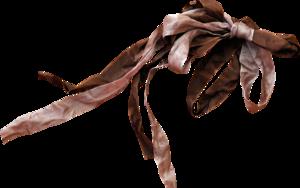 коричневые банты