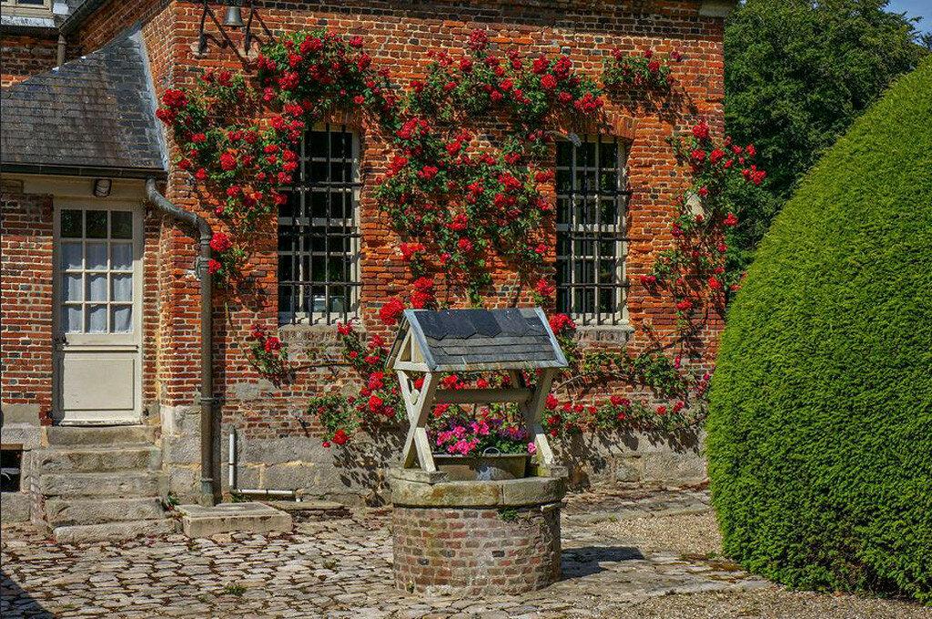Roseraie_chateau_Mesnil_Geoffroy02.jpg