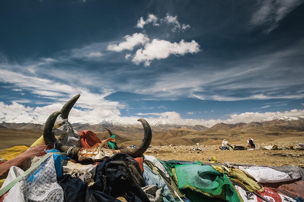 7. Черепа яка, самого популярного тибетского домашнего животного, тоже встречаются на перевалах и в