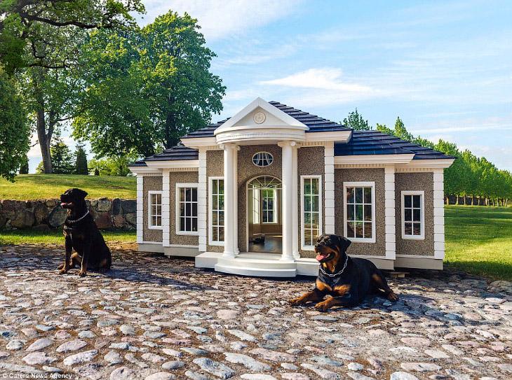 2. По человеческим меркам это дом небольшой, но если сравнить с обычной собачьей конурой — очень про