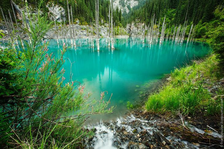 Озеро Каинды: утонувший лес (31 фото)