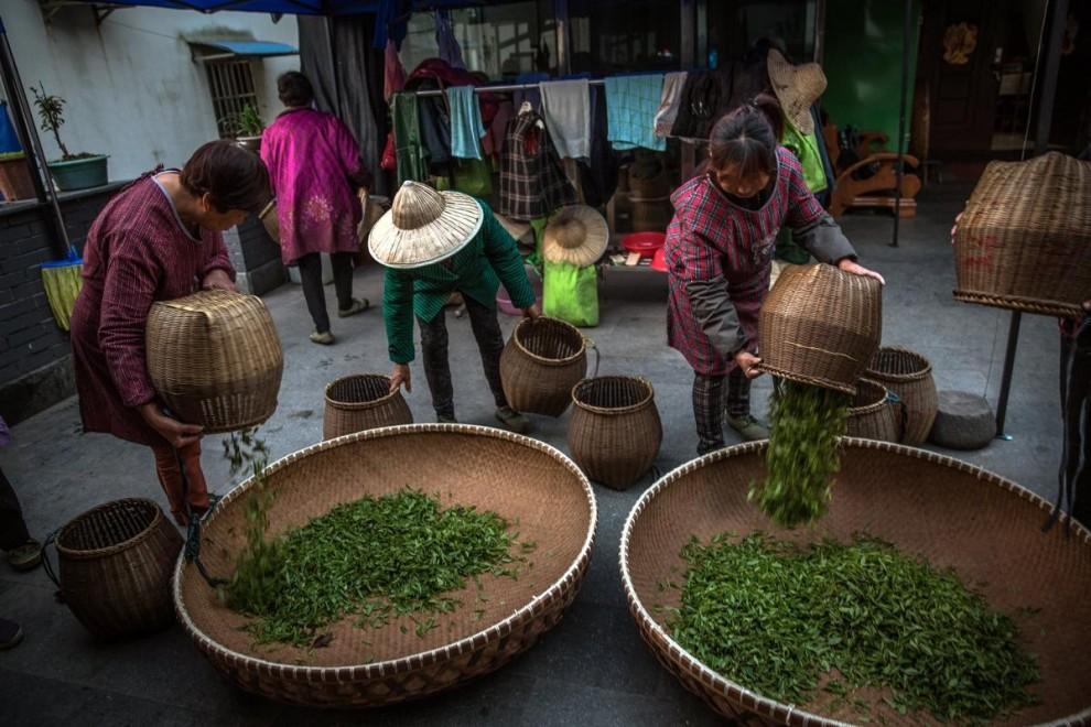 Здание в виде чайника в городе Цзуньи в провинции Гуйчжоу.