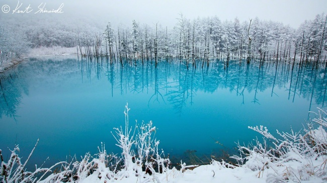 © fotorelax.ru  Голубой пруд впрефектуре Хоккайдо был создан после строительства дамбы как ча
