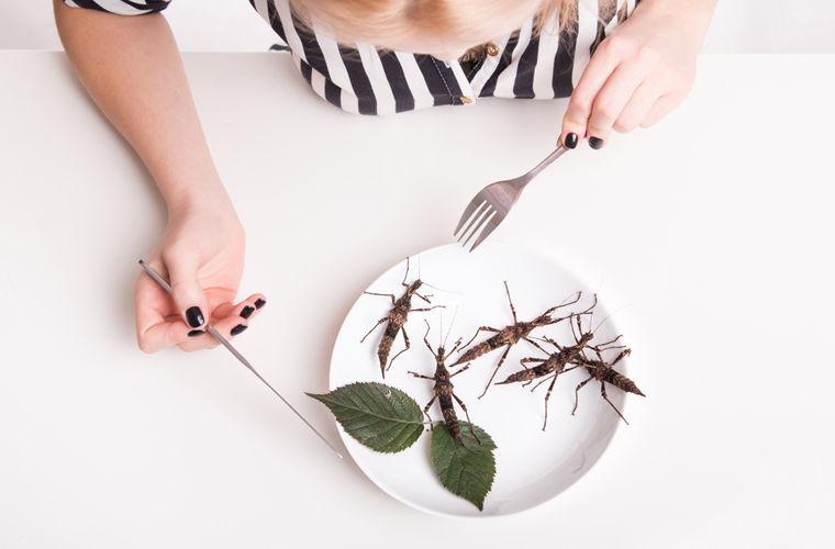 Ученые рекомендуют заменить мясо врационе насекомыми