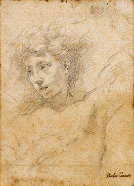 Giulio Cesare-Procaccini-StudyofaYoungMan-1312015T1338.jpg