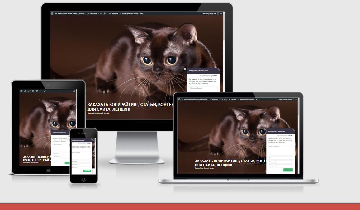 0_194819_3bc729c8_orig Полезный сервис, который поможет вам увидеть как выглядит ваш сайт в мобильных устройствах