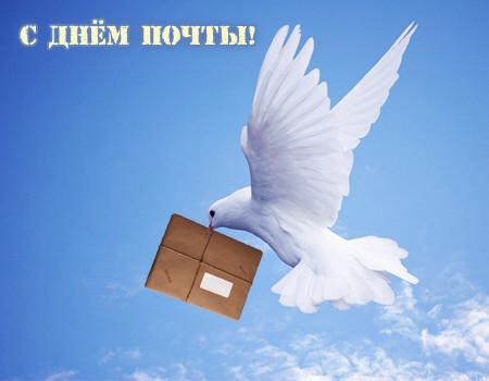 День почты! Голубь несет посылку