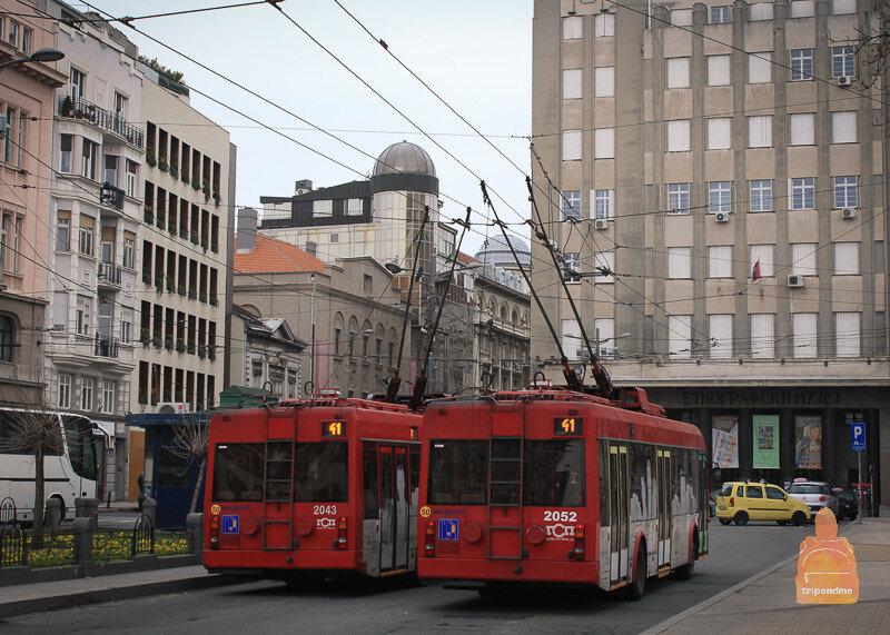 Троллейбусы в Белграде