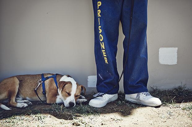 Большинство заключенных, с которыми Дюбуа и Кроуфорд познакомились в 2014 году, осуждены пожизненно,