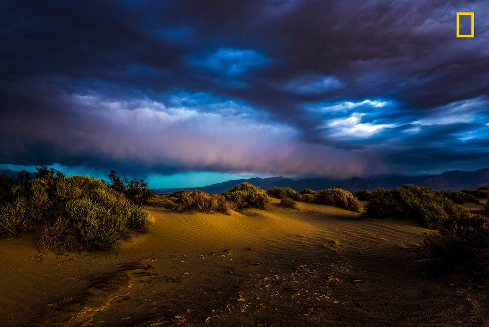 7. (Фото Felix Malte Dorn   National Geographic Your Shot):