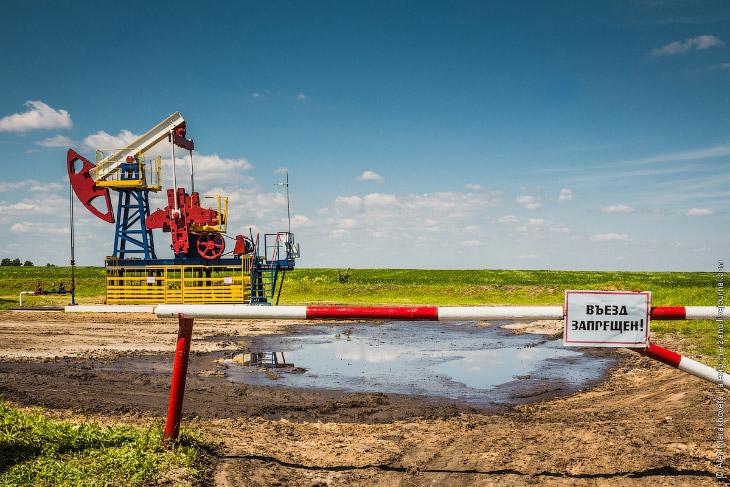 Как добывают нефть и можно ли это делать самостоятельно? (17 фото)