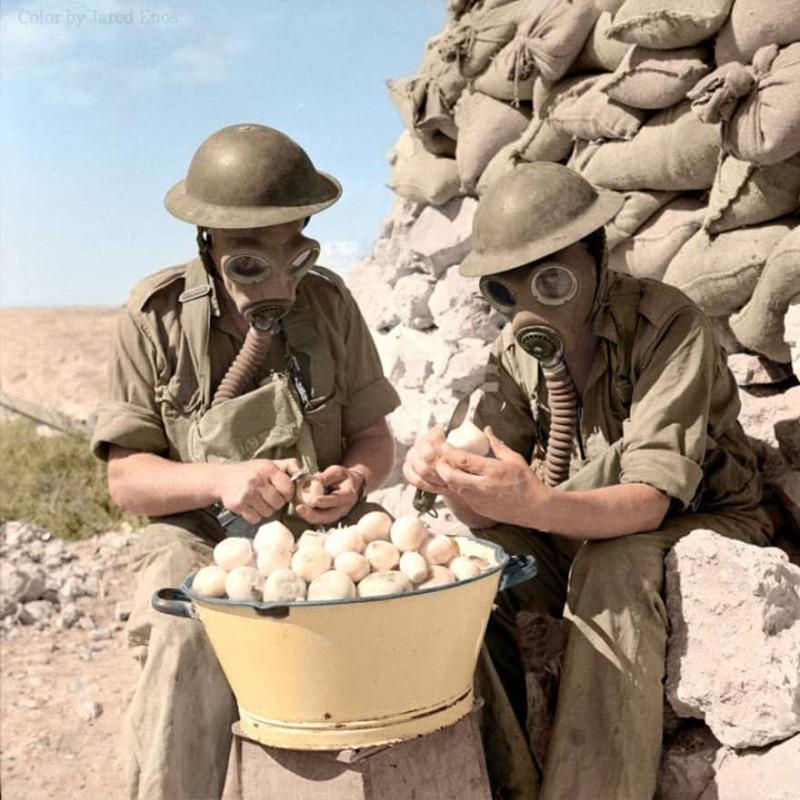 Солдаты чистят лук в противогазах. Октябрь 1941 года.