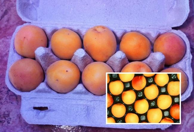 © Pixabay  Для хранения берем абрикосы слегка недозрелые, без пятен ипрочих дефектов. Если пл