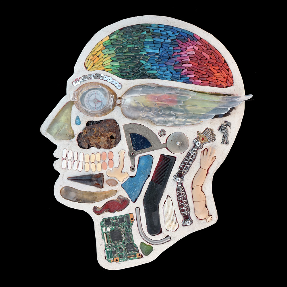 Anatomical Cross-Sections of Human Heads Reveal a Menagerie of Found Objects (7 pics)