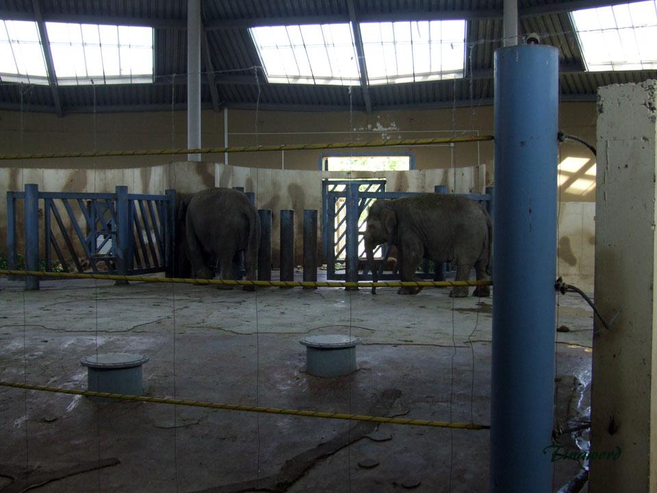 зоопарк-050.jpg