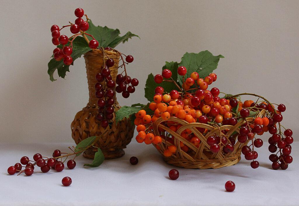 композиция с ягодами