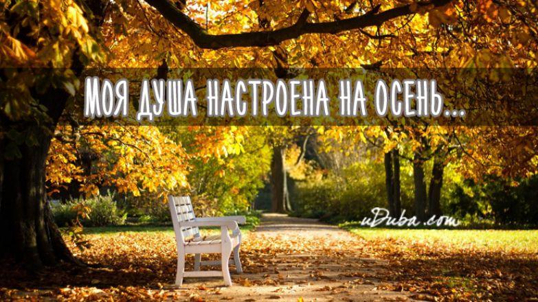 Моя душа настроена на осень