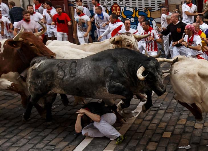 Каждый год в в испанской Памплоне стартует фестиваль Сан Фермин. Фиеста начинается в канун дня