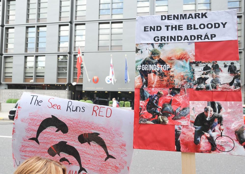 Но дело в том, что Фарерские острова с 1948 года имеют статус автономного региона, Дания решает толь